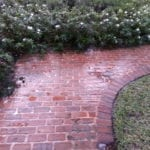 Brick Walk Way Cleaning Before