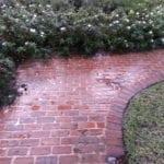 Brick Walk Way Cleaning Before
