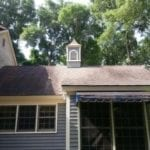 It's Alive! Understanding Black Streaks on Your Roof